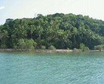 ขายที่ดิน ริมหาดเกาะปอ อำเภอเกาะลันตา กระบี่