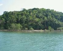ขายที่ดินริมหาดเกาะปอ อำเภอเกาะลันตา กระบี่
