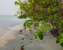 ขายที่ดินติดหาดไพลิน อ.คลองใหญ่ ตราด 1-1-06ตรว.
