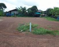 ขายด่วนที่ดินเปล่า ในหมู่บ้าน อ.เมือง จ.สกลนคร