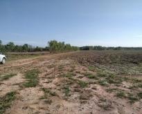 ที่ดินสำหรับทำฟาร์มเกษตร