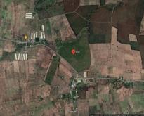 ที่ดินทำเกษตร อ.เนินขาม ชัยนาท ประมาณ 155 ไร่
