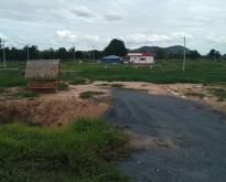 ขายที่ดิน2ไร่ วังวัว ติดถนนสองด้าน วิวเขา