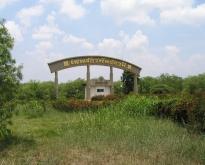 ขายด่วน ที่ดินถูกมากสวนมะขามหวาน จังหวัดเพชรบูรณ์