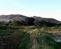 ขายที่ดินสวยราคาถูกมาก 65 ไร่ รายล้อมด้วยภูเขา