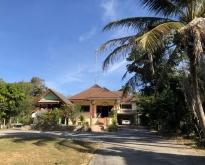 ขายด่วน บ้านสวนพร้อมที่ดิน บ้านสวยสภาพดี