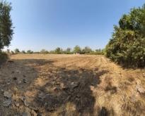ขายที่ดินพร้อมสิ่งปลูกสร้าง 6.2ไร่ บ้านถิ่น