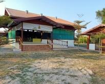 ขายด่วน บ้านพร้อมที่ดินขนาดใหญ่จังหวัดอุดรธานี