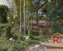 ขายที่ดิน 3 ไร่ ใกล้สวนอุตสาหกรรม 304 จ.ปราจีนบุรี