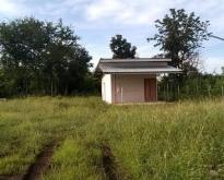 ขายบ้านและที่ดิน 200 ตารางวา
