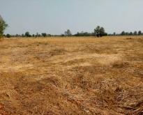 ที่ดินทำการเกษตรขนาดใหญ่ อ.ศรีเทพ