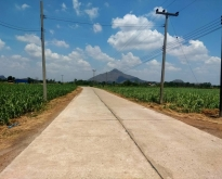 ที่ดินทำบ้านสวนการเกษตรโคกหนองนา
