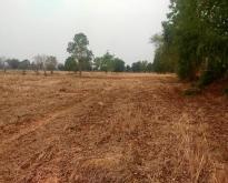ที่ดินทำการเกษตรใกล้หมู่บ้าน ต.นาสนุ่น อ.ศรีเทพ