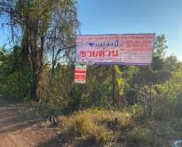 ขายที่ดิน 5-3-48 ไร่  อ.เมือง  จ.นครพนม