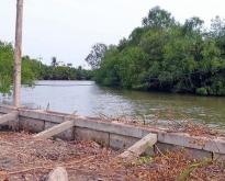 ขายด่วนที่ดินติดแม่น้ำ 3 ไร่ 1 งาน  ใกล้อัมพวา