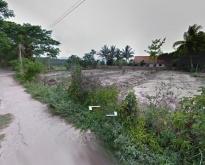 ขายที่ดิน ติดถนน ขนาด 1-2-88 ไร่ แม่ปืม เมืองพะเยา