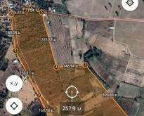 ขายที่ดินทำเกษตร 110 ไร่ อ.ท่าคันโท จ.กาฬสินธุ์