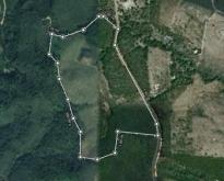 ที่ดินพร้อมสวนปาล์มและสวนยางพารา 48 ไร่ 33 ตารางวา