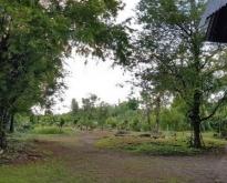 ขายที่ดินพร้อมบ้านสวนอัมพวา จังหวัดสมุทรสงคราม