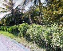 ขายที่ดินสวนผสม โป่งน้ำร้อน จันทบุรี 36-3-80 ไร่