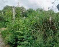 ขาย ที่ดินเปล่า 1 ไร่ อำเภอท่าวุ้ง จังหวัดลพบุรี