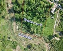 ขายที่ดิน4-2-49 ไร่ลำปางใกล้ศูนย์อนุรักษ์ช้างไทย