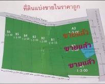 ขายที่ดิน ตำบลจอมบึง จังหวัดราชบุรี