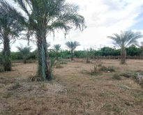 ขายที่ดินสวนมะม่วง 6-0-73 ไร่ ตลิ่งชัน สุพรรณบุรี