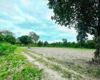 ขาย ที่ดินยกแปลง สวนผึ้ง ราชบุรี โฉนด 2ฉบับติดกัน