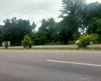 ที่ดินติดถนนเส้นหลักสระบุรีหล่มสักศรีเทพเพชรบูรณ์