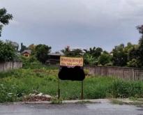 ขายด่วนถูกมาก ที่ดิน เมือง นครปฐม