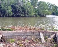 ขายด่วนที่ดิน ติดแม่น้ำ ใกล้อัมพวา 3 ไร่ 1 งาน
