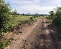 ขายที่ดิน 97ตรว. 780,000 บาท ต.กกโก อ.เมือง ลพบุรี