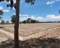 ดินแบ่งขาย โคกหนองนา สวนป่า โมเดล3 สุพรรณบุรี