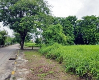 ขายที่ดินเนื้อที่  แปลงมุม ในหมู่บ้านกฤษดานคร18