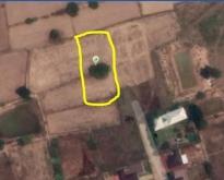 ขายที่ดิน 2ไร่ 2ลบ.บ้านคลองลี่ ต.รอบเมือง ชัยภูมิ