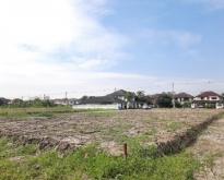 ขายที่ดินถูกสุด ที่ถมแล้ว ในซอยพระยาสุเรนทร์ 33