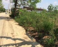 ขายที่ดิน 4 ไร่ อยู่ในเขตชุมชน จังหวัดชลบุรี