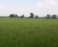 ขายที่ดิน 40 ไร่ ทำเลที่สวย ตำบลไร่รถ สุพรรณบุรี